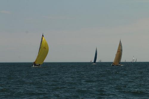 2019-c-w-race-sml-100
