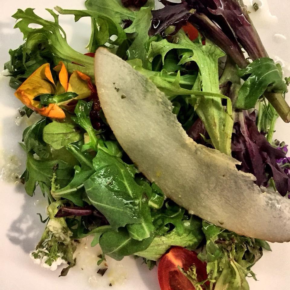 Multihued salad