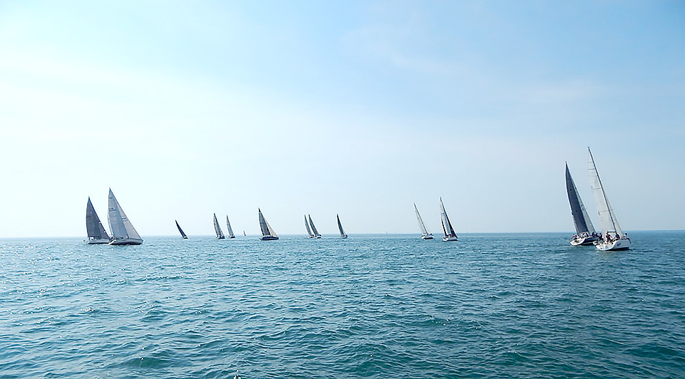 sailboats racing away