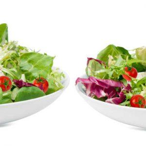 Large Garden Salad hero
