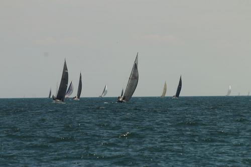 2019-c-w-race-sml-102